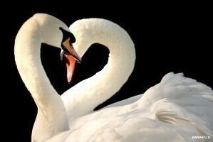 Сохранить пламя любви