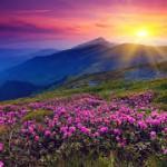 Просветление – ключ к прошлым жизням