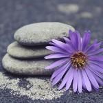 Некротические связи и продолжительность жизни